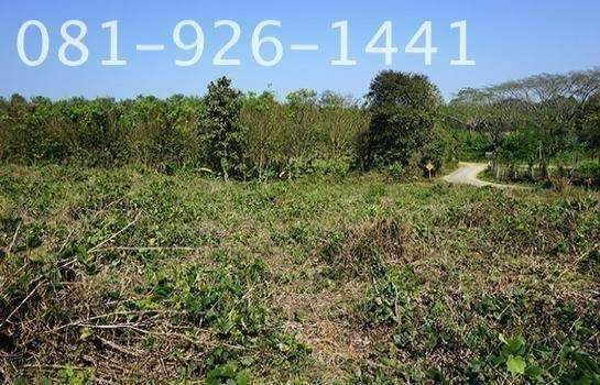 For Sale Land 9 rai in Mae Sai, Chiang Rai, Thailand   Ref. TH-IWAESHTX