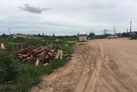 For Rent Land 2 rai in Si Racha, Chonburi, Thailand