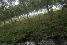 For Sale Land 11 rai in Makham, Chanthaburi, Thailand