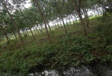 ขาย ที่ดิน 11 ไร่ มะขาม จันทบุรี