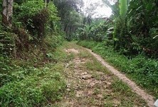For Sale Land 42 rai in Thalang, Phuket, Thailand
