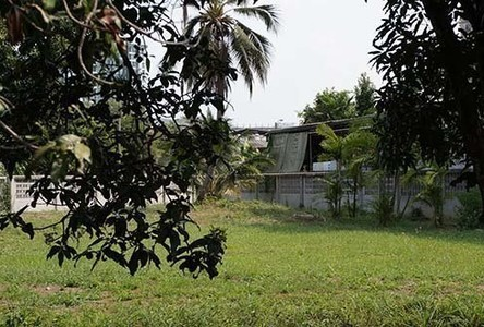 For Rent Land 224 sqwa in Phasi Charoen, Bangkok, Thailand