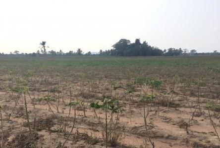 For Sale Land 16.5 rai in Bang Lamung, Chonburi, Thailand