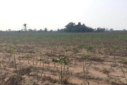 Продажа: Земельный участок 16.5 рай в районе Bang Lamung, Chonburi, Таиланд