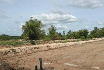 For Sale Land 14 rai in Phanat Nikhom, Chonburi, Thailand