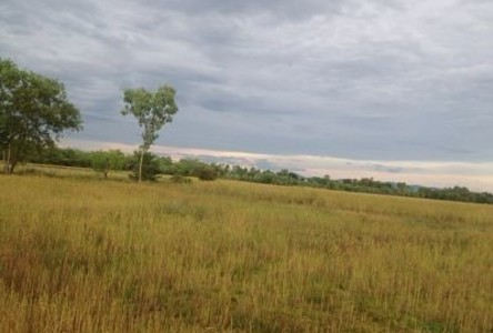 For Sale Land 18 rai in Prachantakham, Prachin Buri, Thailand