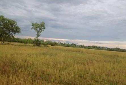 ขาย ที่ดิน 18 ไร่ ประจันตคาม ปราจีนบุรี