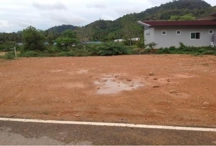For Sale Land 114 sqwa in Mueang Krabi, Krabi, Thailand