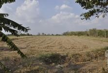 For Sale Land 35 rai in Nakhon Luang, Phra Nakhon Si Ayutthaya, Thailand