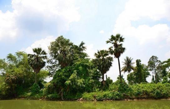ขาย ที่ดิน 540 ตร.ว. เมืองปทุมธานี ปทุมธานี | Ref. TH-UZBEUSYK
