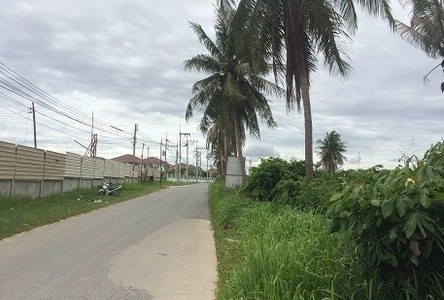 For Sale Land 2 rai in Bang Lamung, Chonburi, Thailand