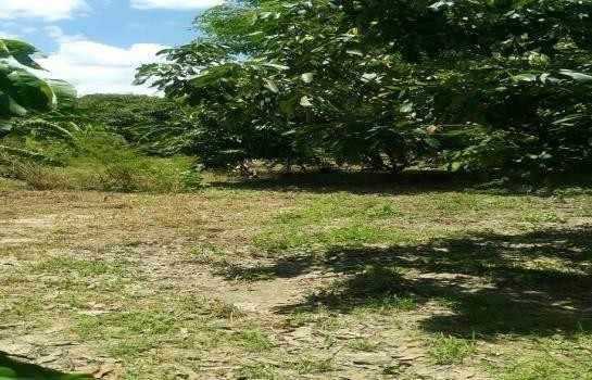 For Sale or Rent Land 1 rai in Mueang Nakhon Pathom, Nakhon Pathom, Thailand | Ref. TH-OECAHXKD