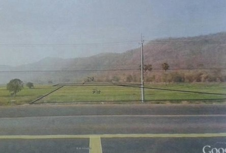 For Sale Land 9 rai in Wang Thong, Phitsanulok, Thailand