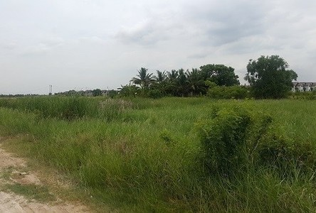 For Rent Land 4 rai in Nong Chok, Bangkok, Thailand