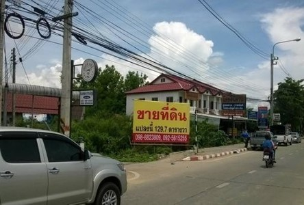 For Sale Land 129 sqwa in Mueang Chiang Mai, Chiang Mai, Thailand