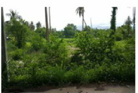 For Sale Land 3 rai in Si Racha, Chonburi, Thailand