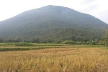 For Sale Land 12 rai in Chiang Khan, Loei, Thailand