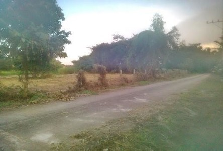 For Sale Land 200 sqwa in Mueang Chiang Rai, Chiang Rai, Thailand