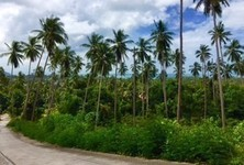 For Sale Land 4 rai in Ko Samui, Surat Thani, Thailand