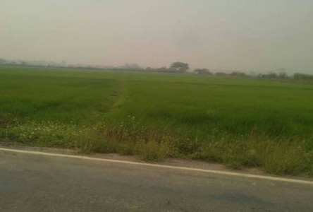 For Sale Land 18 rai in Mae Sai, Chiang Rai, Thailand
