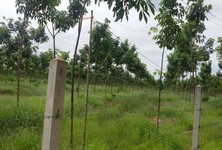 For Sale Land 58 rai in Mueang Udon Thani, Udon Thani, Thailand