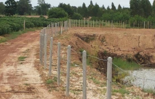 For Sale Land 100 sqwa in Khao Suan Kwang, Khon Kaen, Thailand | Ref. TH-VRJGFFXT