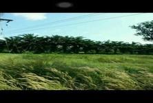 ขาย ที่ดิน 260 ตร.ว. เมืองจันทบุรี จันทบุรี
