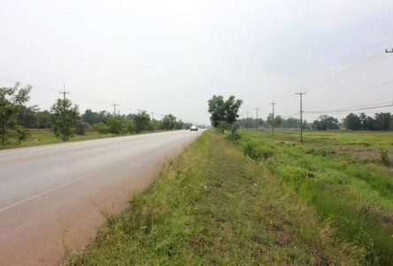 For Sale Land 17 rai in Phang Khon, Sakon Nakhon, Thailand