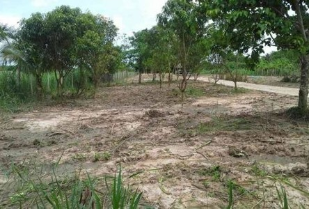 For Sale Land 100 sqwa in Hua Hin, Prachuap Khiri Khan, Thailand