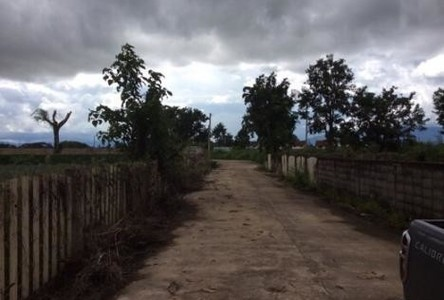 For Sale Land 16 rai in Mueang Chiang Rai, Chiang Rai, Thailand