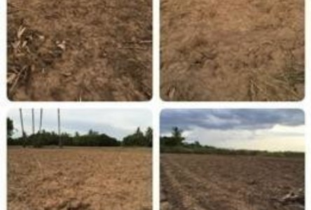 For Sale Land 1 rai in Si Samrong, Sukhothai, Thailand