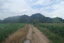 For Sale Land 145 rai in Kaeng Khoi, Saraburi, Thailand