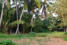 For Sale Land 600 sqwa in Mueang Phuket, Phuket, Thailand