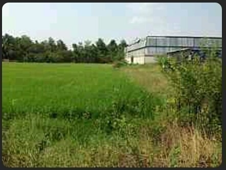 For Sale or Rent Land 152 sqwa in Phutthamonthon, Nakhon Pathom, Thailand | Ref. TH-DKYKWRLT