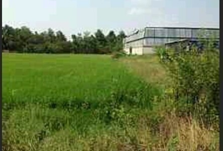 For Sale or Rent Land 152 sqwa in Phutthamonthon, Nakhon Pathom, Thailand