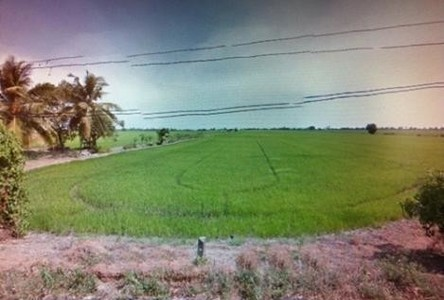 For Sale Land 299 rai in Lat Lum Kaeo, Pathum Thani, Thailand