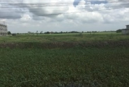 For Rent Land 3 rai in Lat Lum Kaeo, Pathum Thani, Thailand