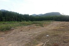 For Sale Land in Mueang Krabi, Krabi, Thailand