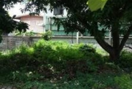 For Sale Land 69 sqwa in Bang Sue, Bangkok, Thailand