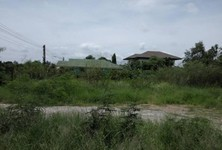 For Rent Land 250 sqwa in Khlong Luang, Pathum Thani, Thailand