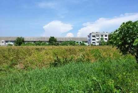 For Sale Land 330 sqwa in Mueang Samut Prakan, Samut Prakan, Thailand