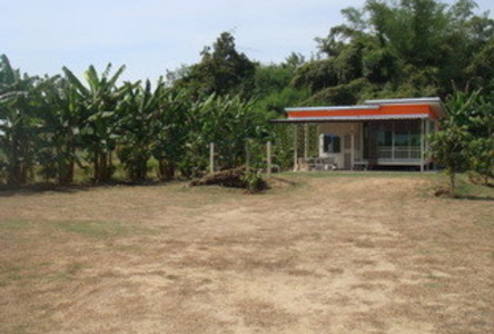 For Sale Land 412 sqwa in Kamphaeng Saen, Nakhon Pathom, Thailand