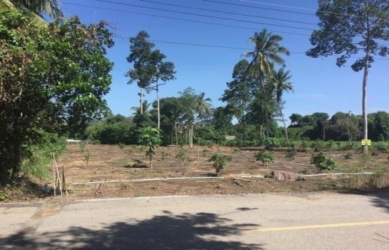 For Sale Land 182 sqwa in Mueang Chai Nat, Chainat, Thailand | Ref. TH-KZZSOGSZ