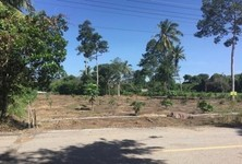 For Sale Land 182 sqwa in Mueang Chai Nat, Chainat, Thailand