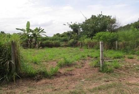 For Sale Land 50 sqwa in Si Racha, Chonburi, Thailand