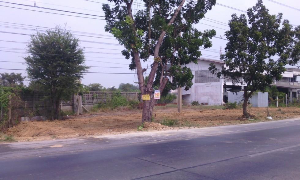 For Rent Land 800 sqm in Lat Lum Kaeo, Pathum Thani, Thailand | Ref. TH-XPRWMJCV