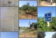For Sale Land 14-3-0 rai in Mueang Nakhon Ratchasima, Nakhon Ratchasima, Thailand