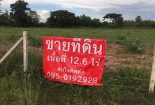 For Sale Land 12-6-0 rai in Mueang Nakhon Ratchasima, Nakhon Ratchasima, Thailand