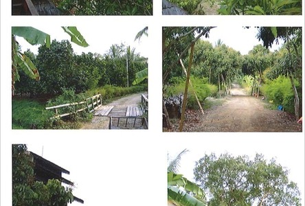 For Sale Land 50 rai in Mae Taeng, Chiang Mai, Thailand