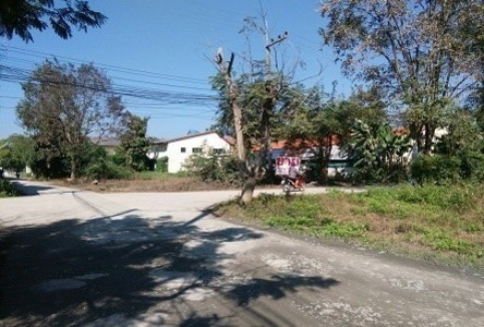 For Sale Land 181 sqwa in Mueang Lamphun, Lamphun, Thailand